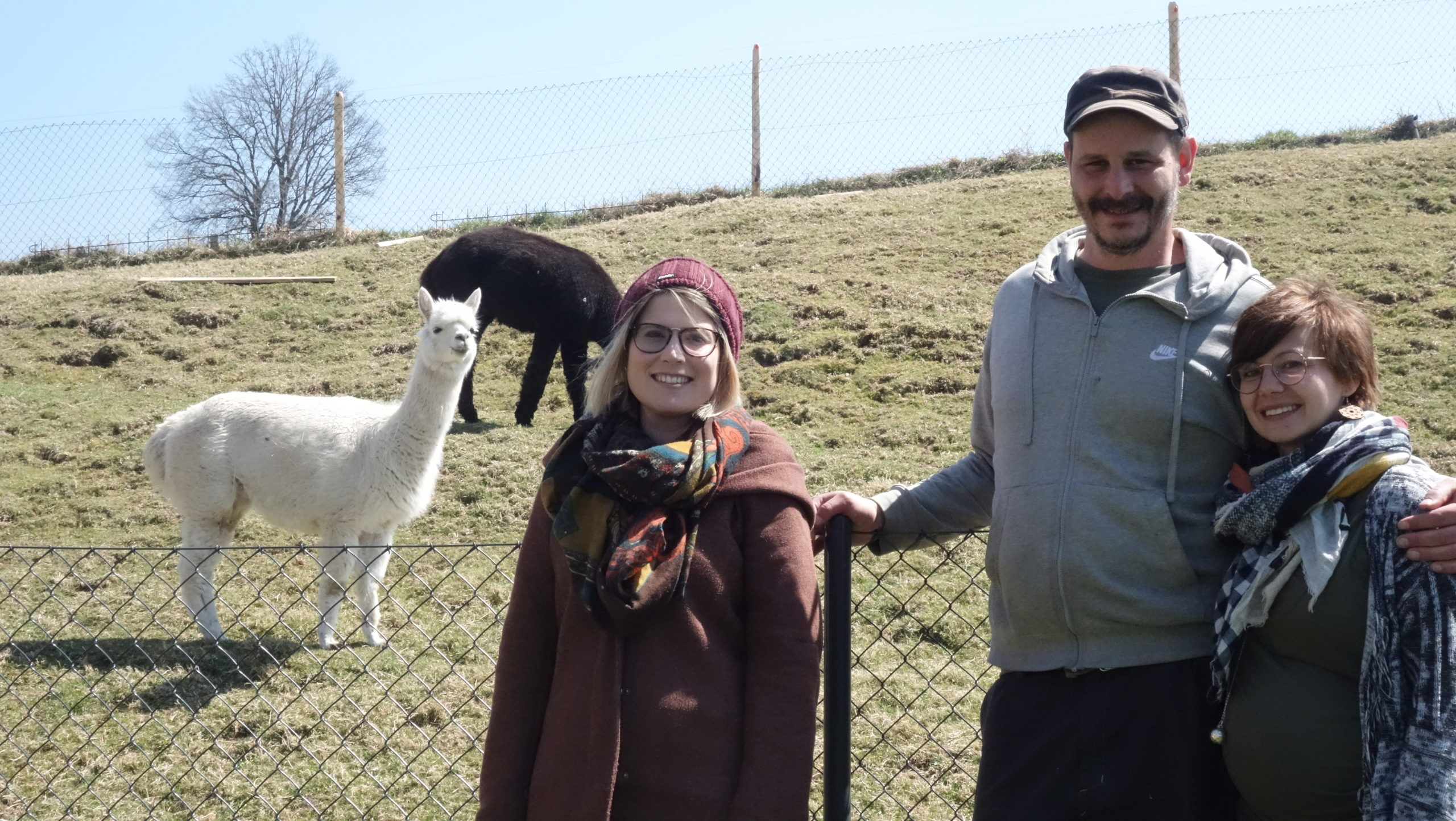 The Optimisticians – Marika, Valentine et Cédric